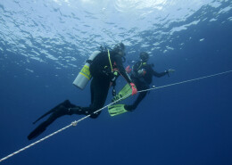 Glups Diving curso padi adventure diving