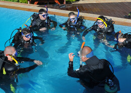 Glups diving curso padi open water diver