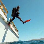 Glups_diving_padi_lovetheocean