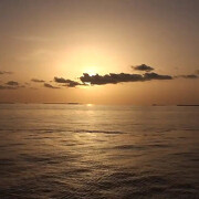 glups_diving_secretos_del_ocenao